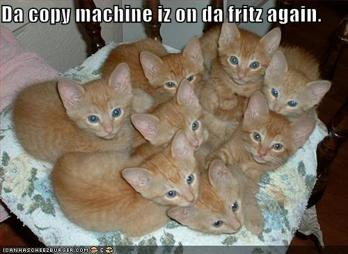funny-pictures-your-copy-machine-has-produced-many-cats (3)