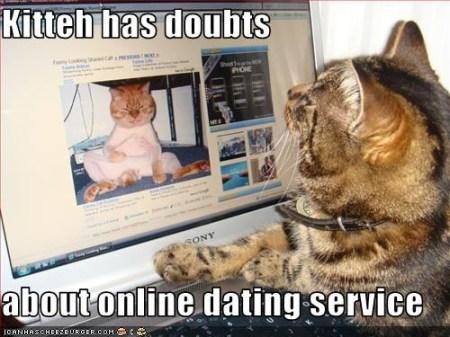 kot i komputer, serwis randkowy