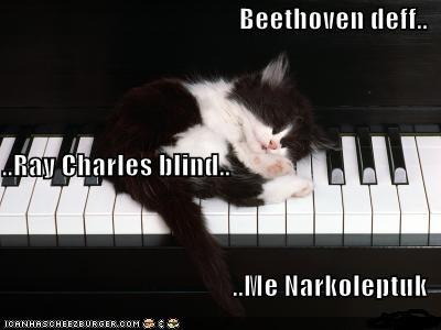 kotek-na-fortepianie