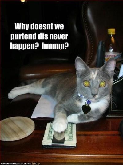 kot i pieniądze