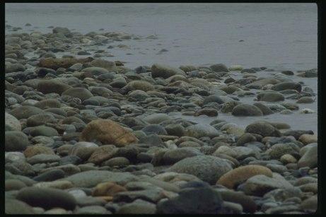 kamienie na brzegu morza, foto