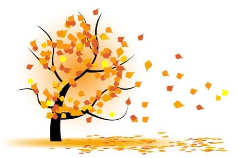 kolorowe liście unoszone wokół drzewa, grafika