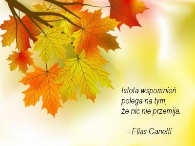 cytat z Canetti'ego, liście klonu na gałęzi