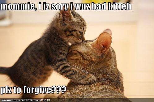 kotek i jego matka