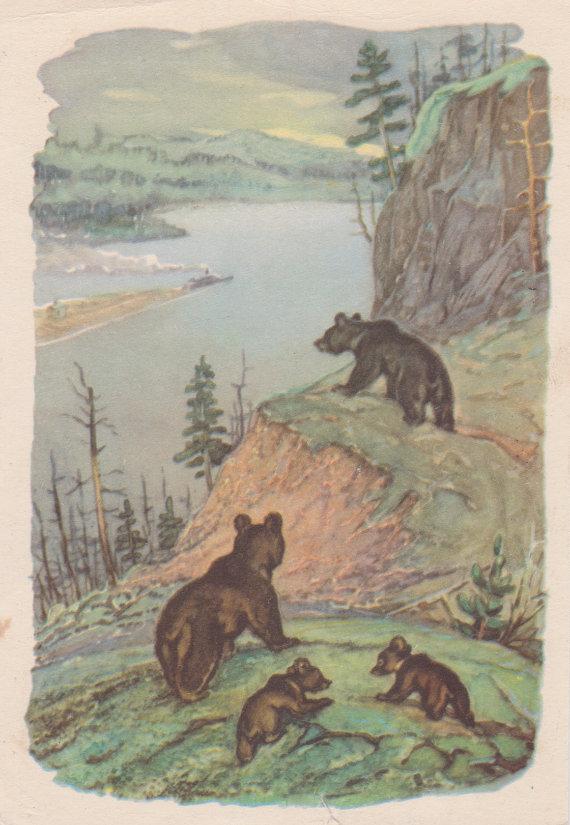 niedźwiadki pocztówka