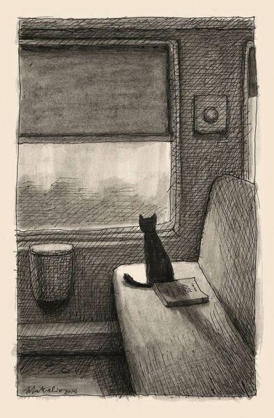 Matticchio - kot w przedziale