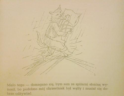 Mysibrat Miauczura